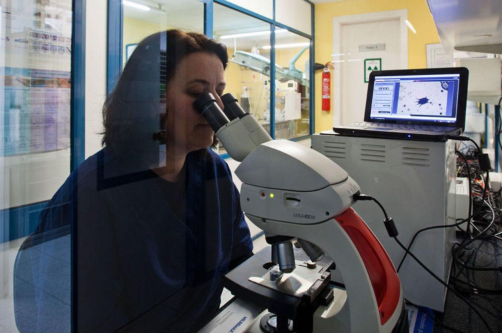 Dermatología: Especialidades de Hospital Veterinario Desvern
