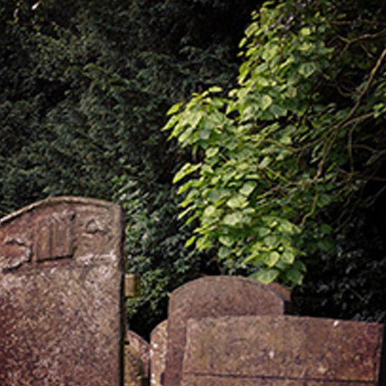 Traslado de restos: Servicios funerarios de Funeraria Sánchez Molera