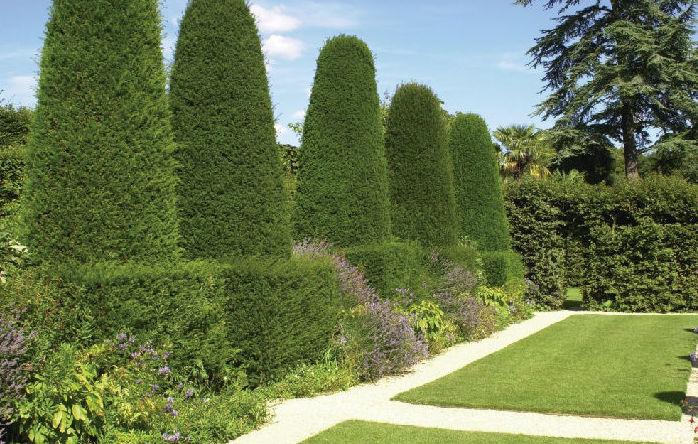 Servicios integrales de jardinería