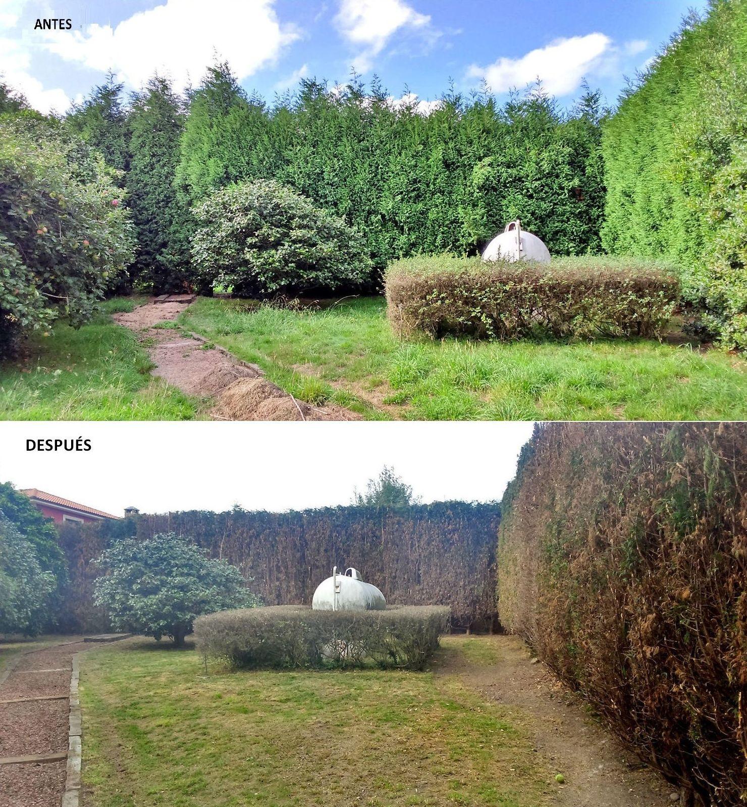 Limpieza y desbroces de jardines