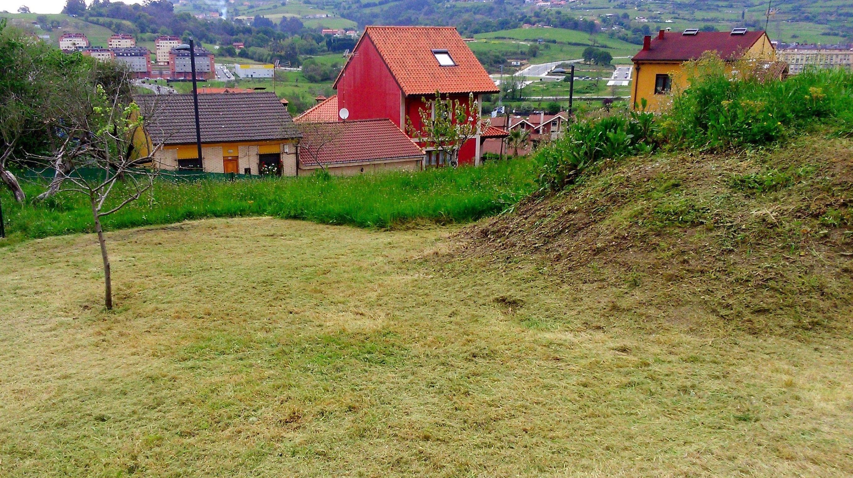 Limpieza y desbroces en Asturias