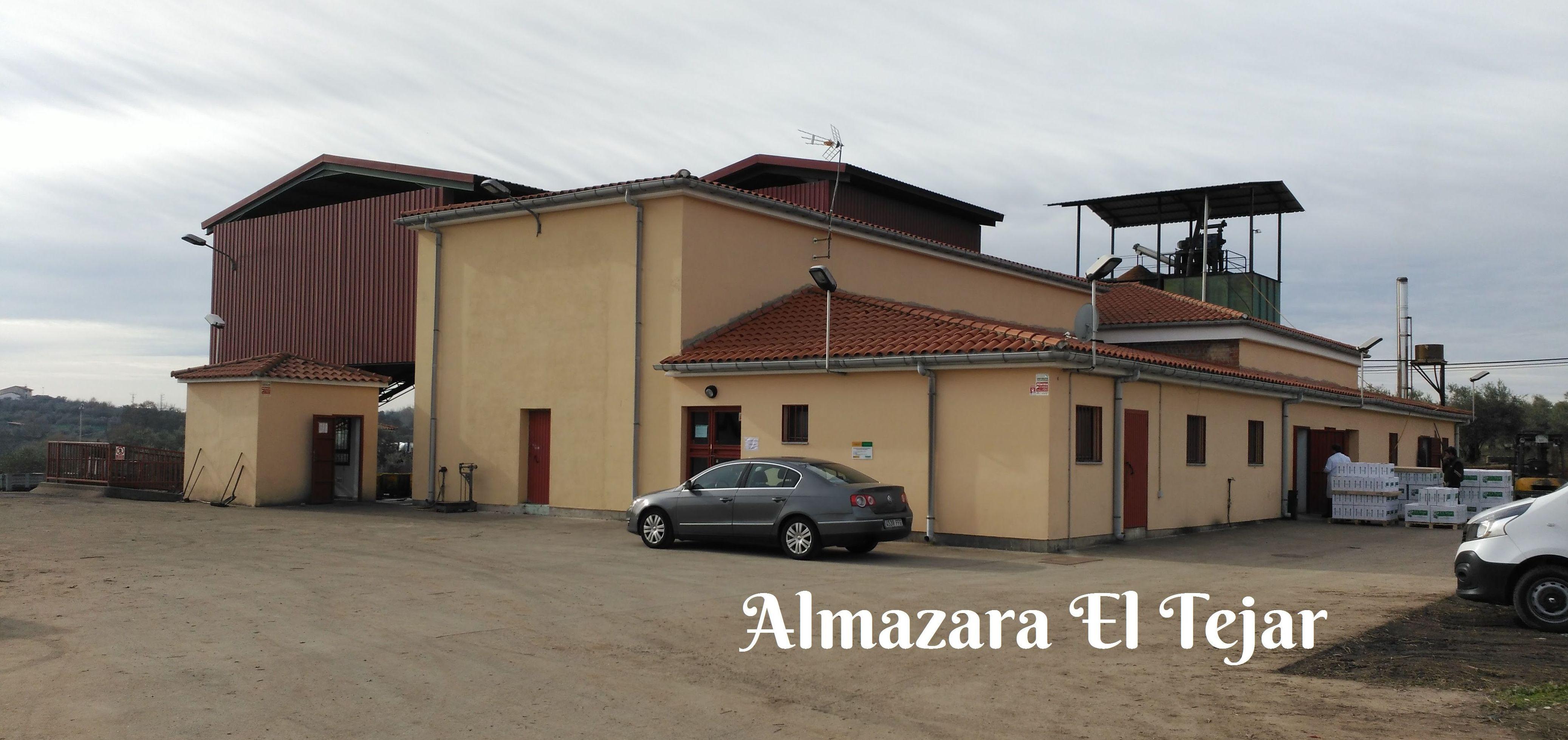 Foto 1 de Aceite de oliva en Tejeda de Tiétar | Almazara El Tejar