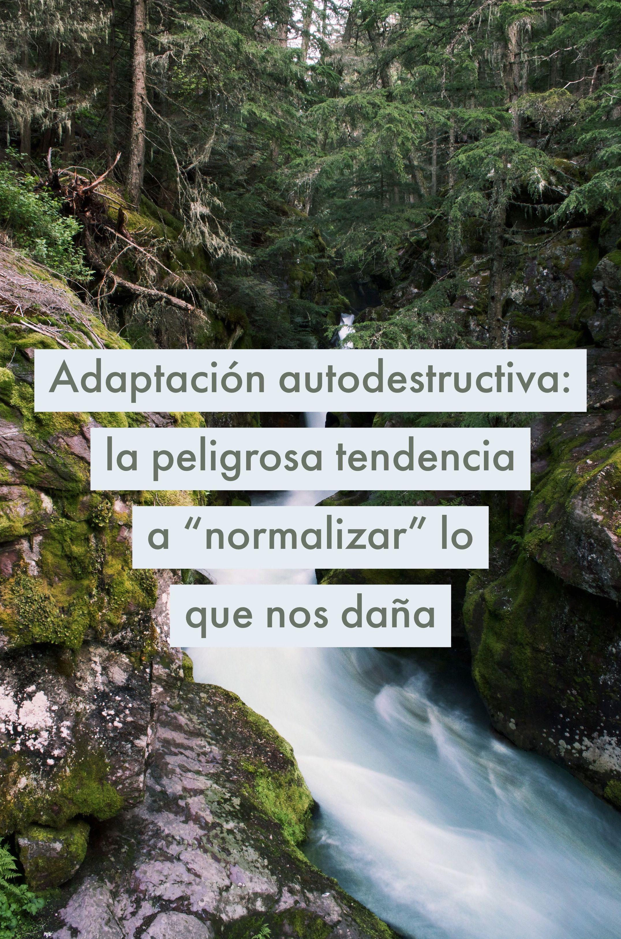 "Adaptación autodestructiva: la peligrosa tendencia a ""normalizar"" lo que nos daña"