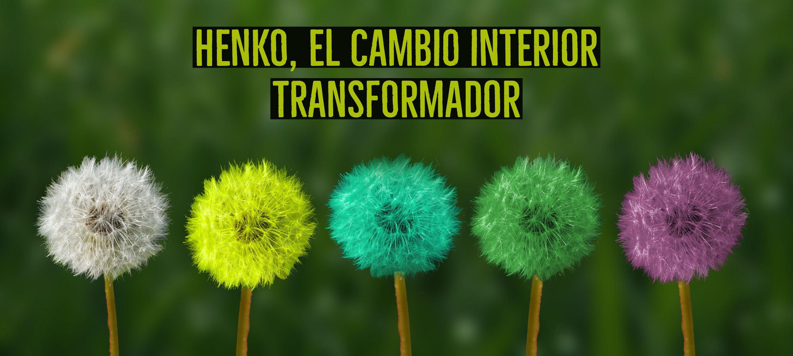 Henko, el cambio interior transformador