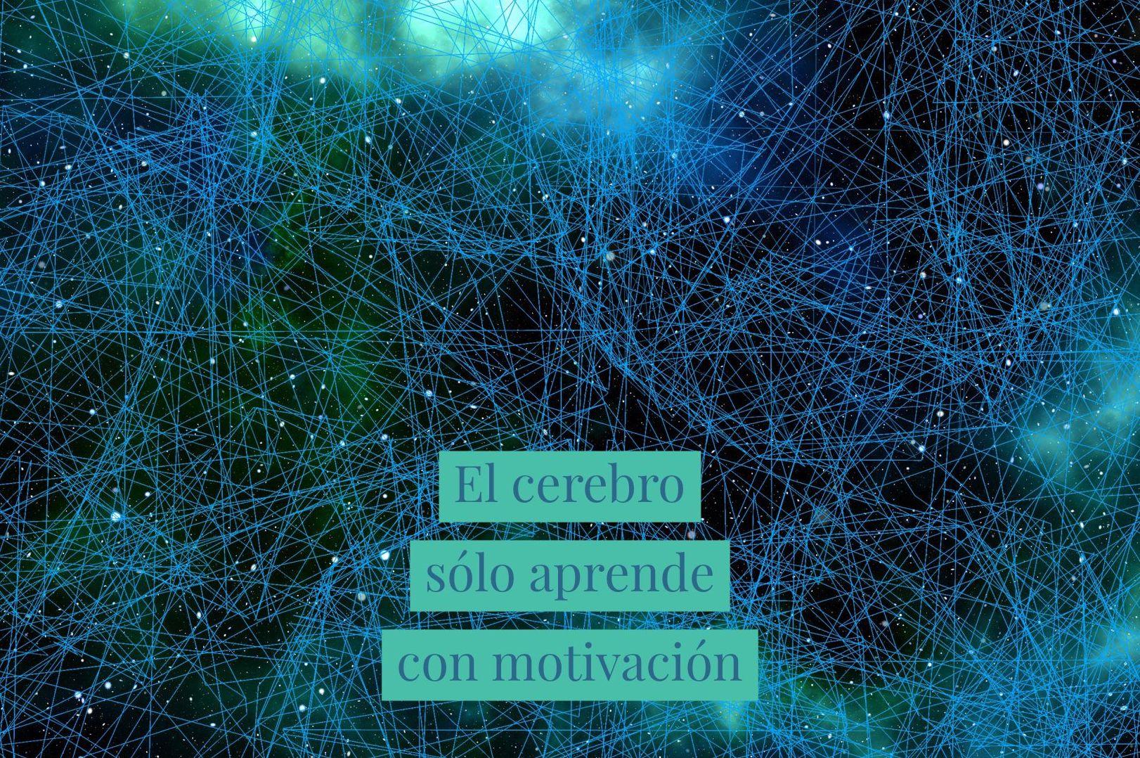 El cerebro sólo aprende con motivación