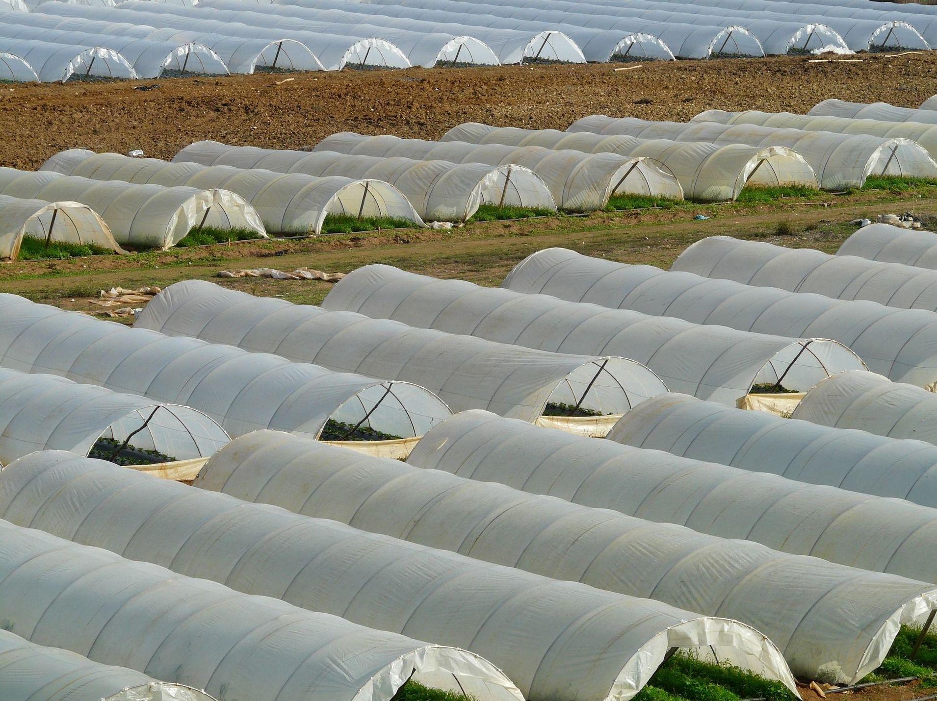 Suministro de materiales para la construcción de invernaderos en Almería