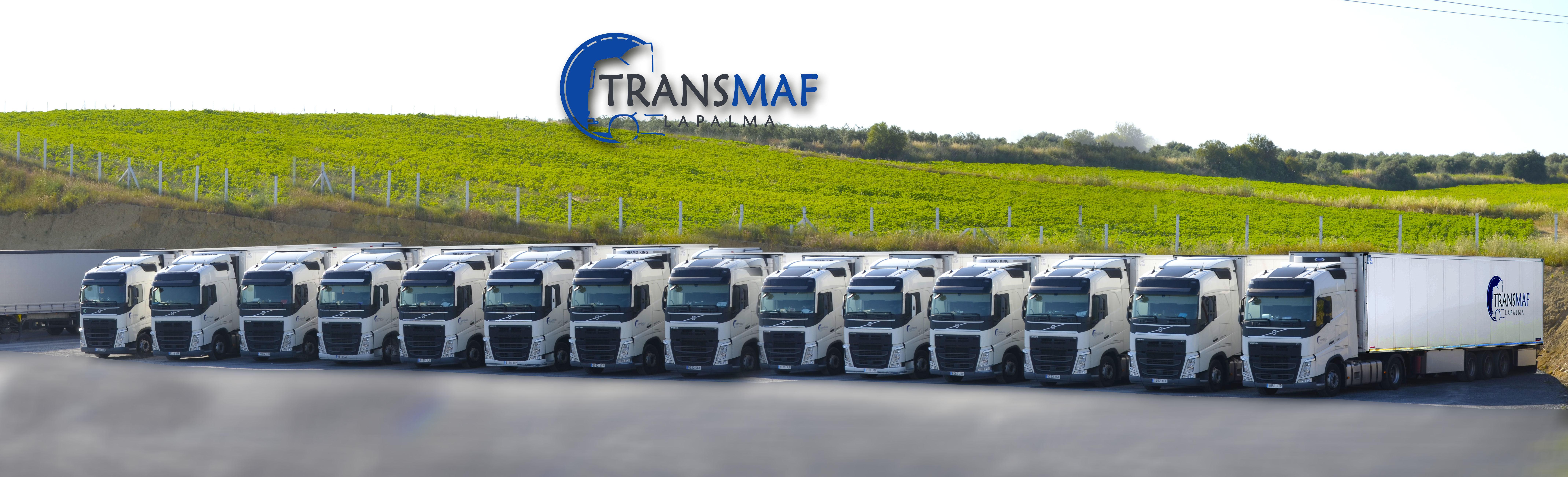 Foto 1 de Transporte de mercancías frigoríficas en La Palma del Condado   Trans- Maf La Palma
