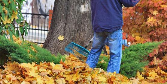 Trabajos de bricolaje en otoño