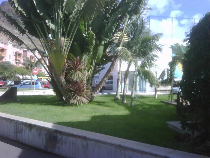 Jardinería y paisajismo en Molowny Servicios Integrales