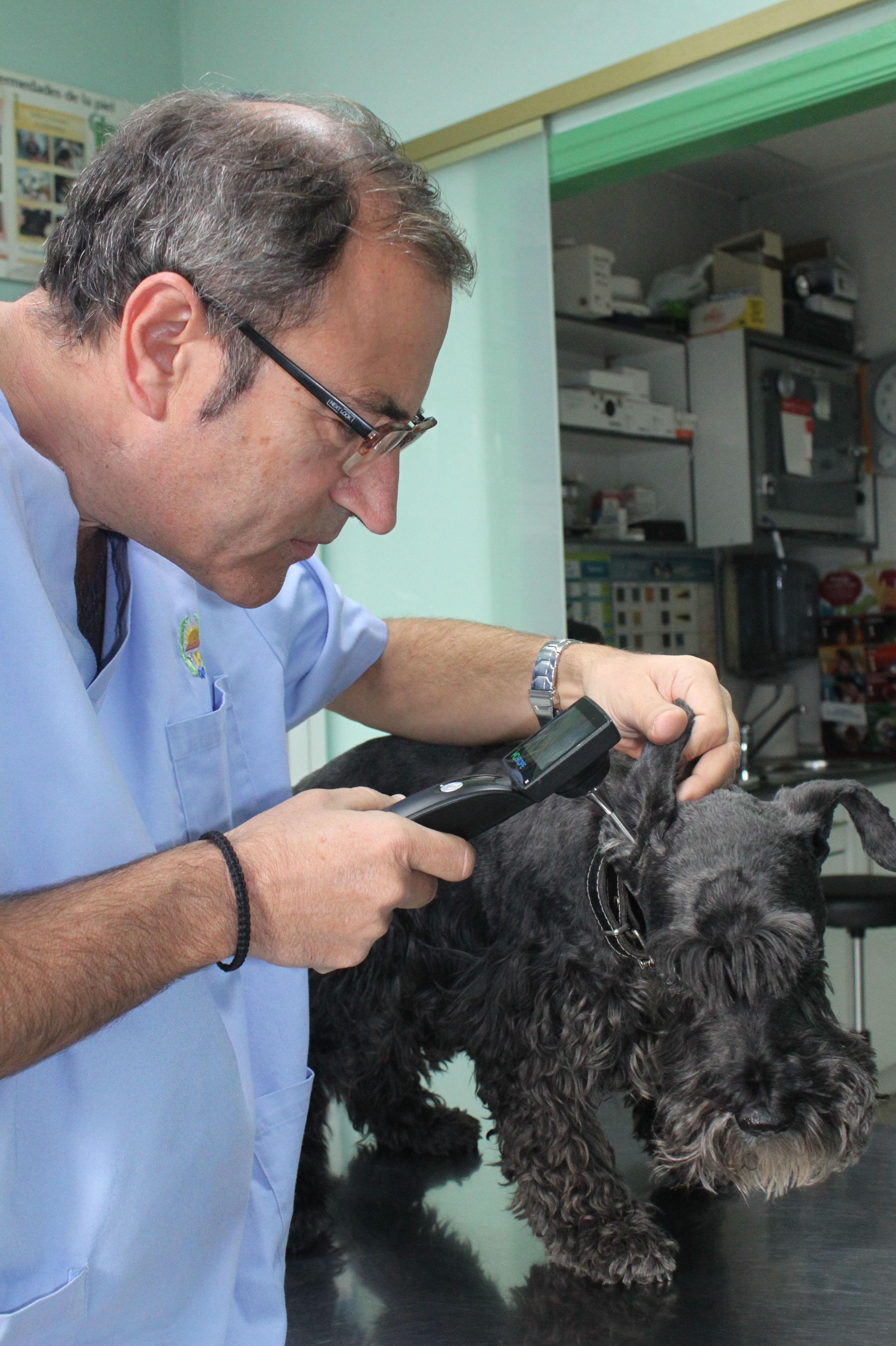 Foto 4 de Veterinarios en  | Argos Clínica Veterinaria