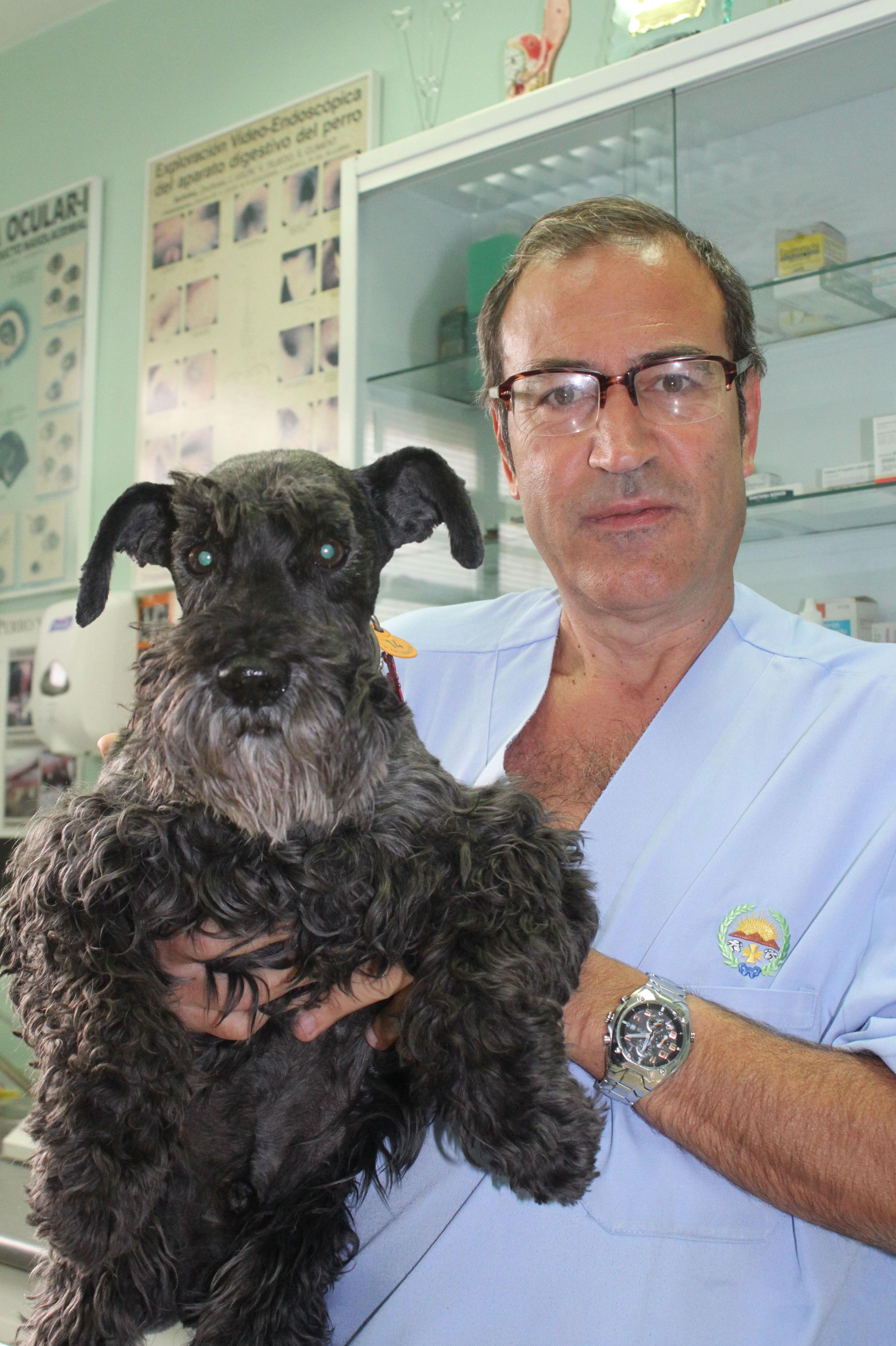 Foto 6 de Veterinarios en  | Argos Clínica Veterinaria