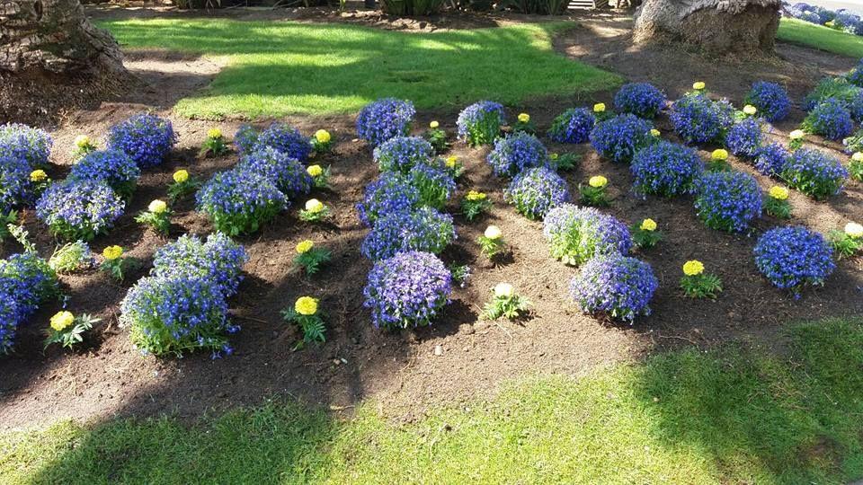 Diseño y mantenimiento de jardines en Cambrils