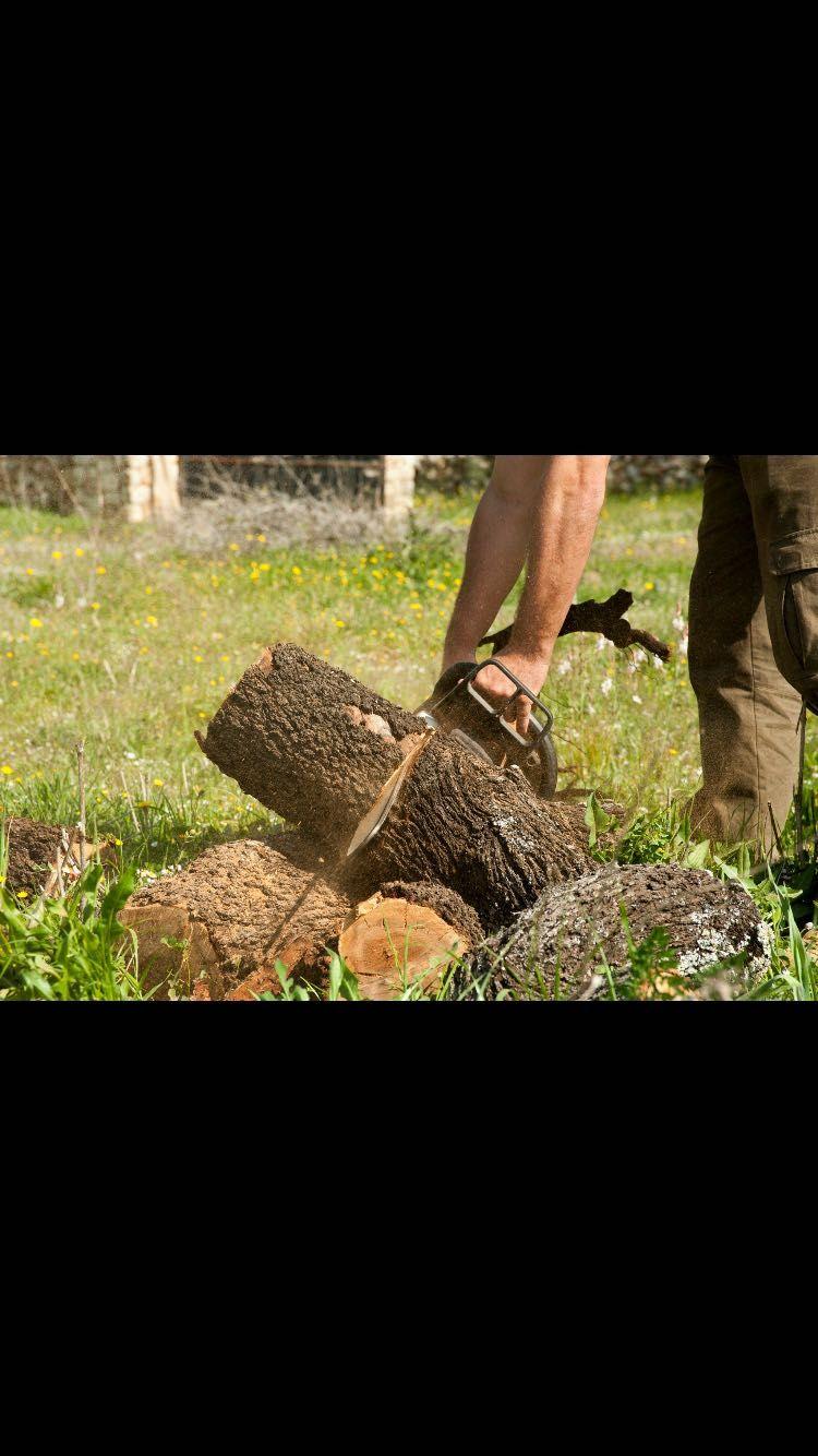 Mantenimiento de jardines de comunidades en Llucmajor, Baleares