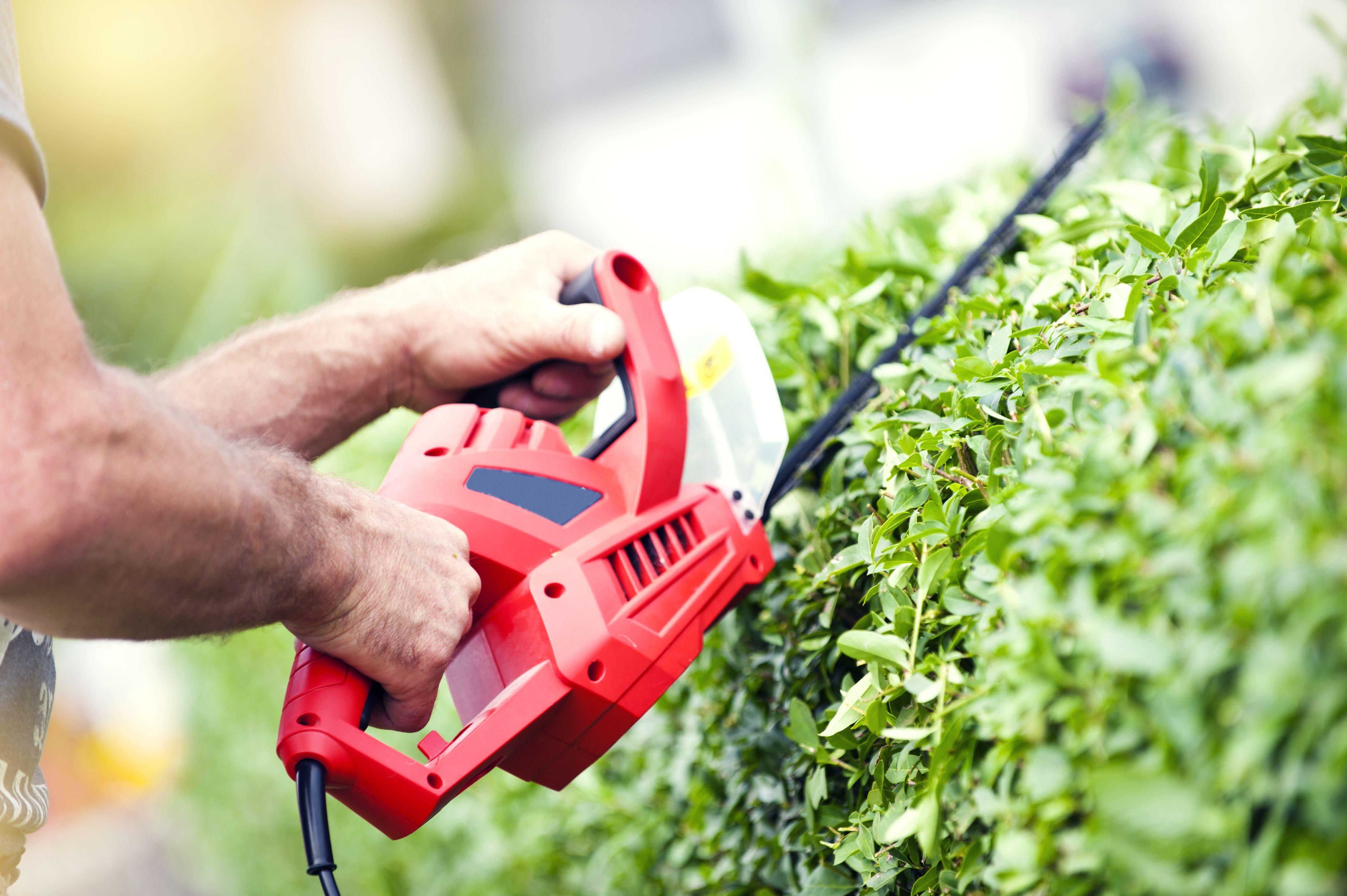 Jardinería: Servicios de Limpiezas Campos