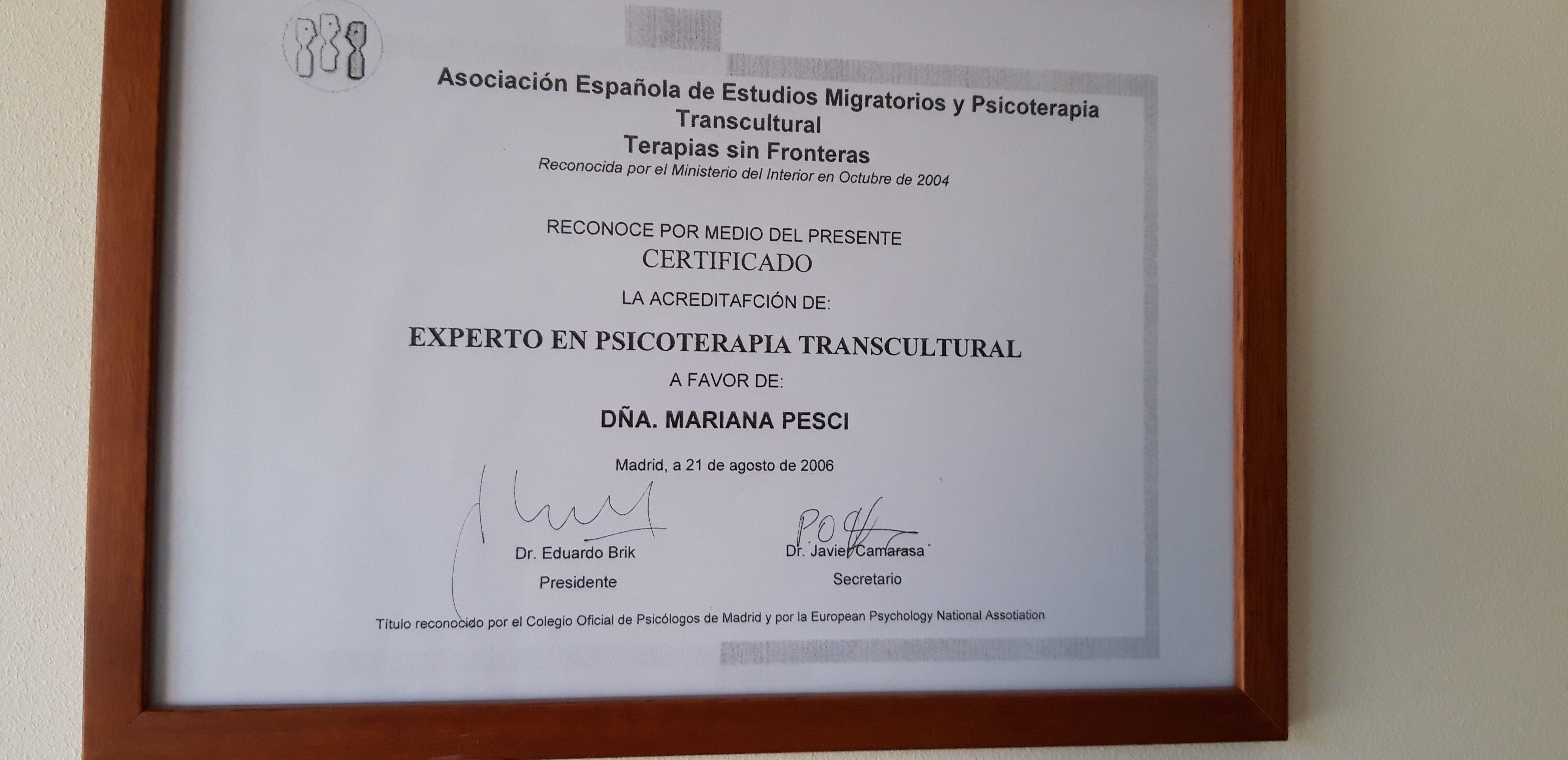 Experto en Psicoterapia Transcultural