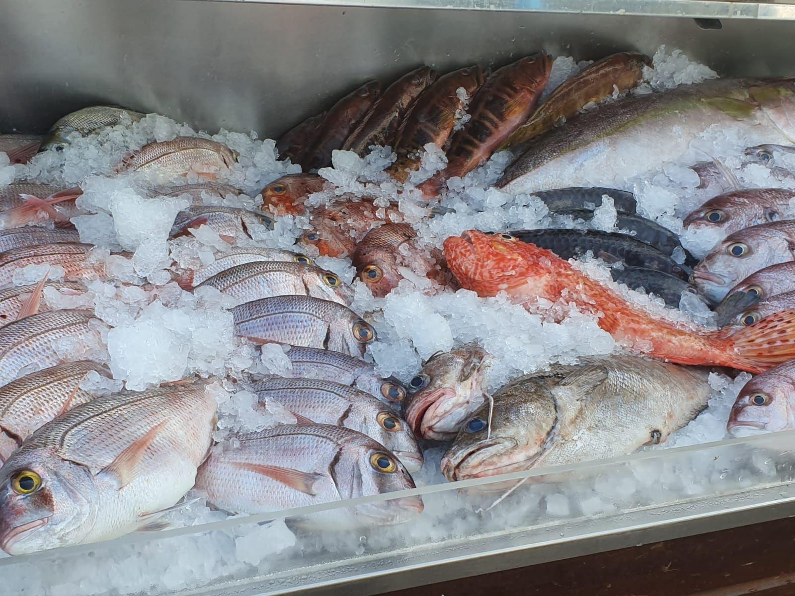 Foto 32 de Restaurante cocina canaria en  | El Anzuelo