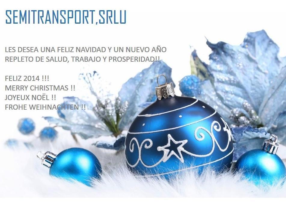 Foto 50 de Transportes especiales en Catarroja | Semitransport