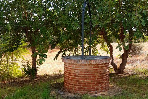 Terapias naturales en Badajoz