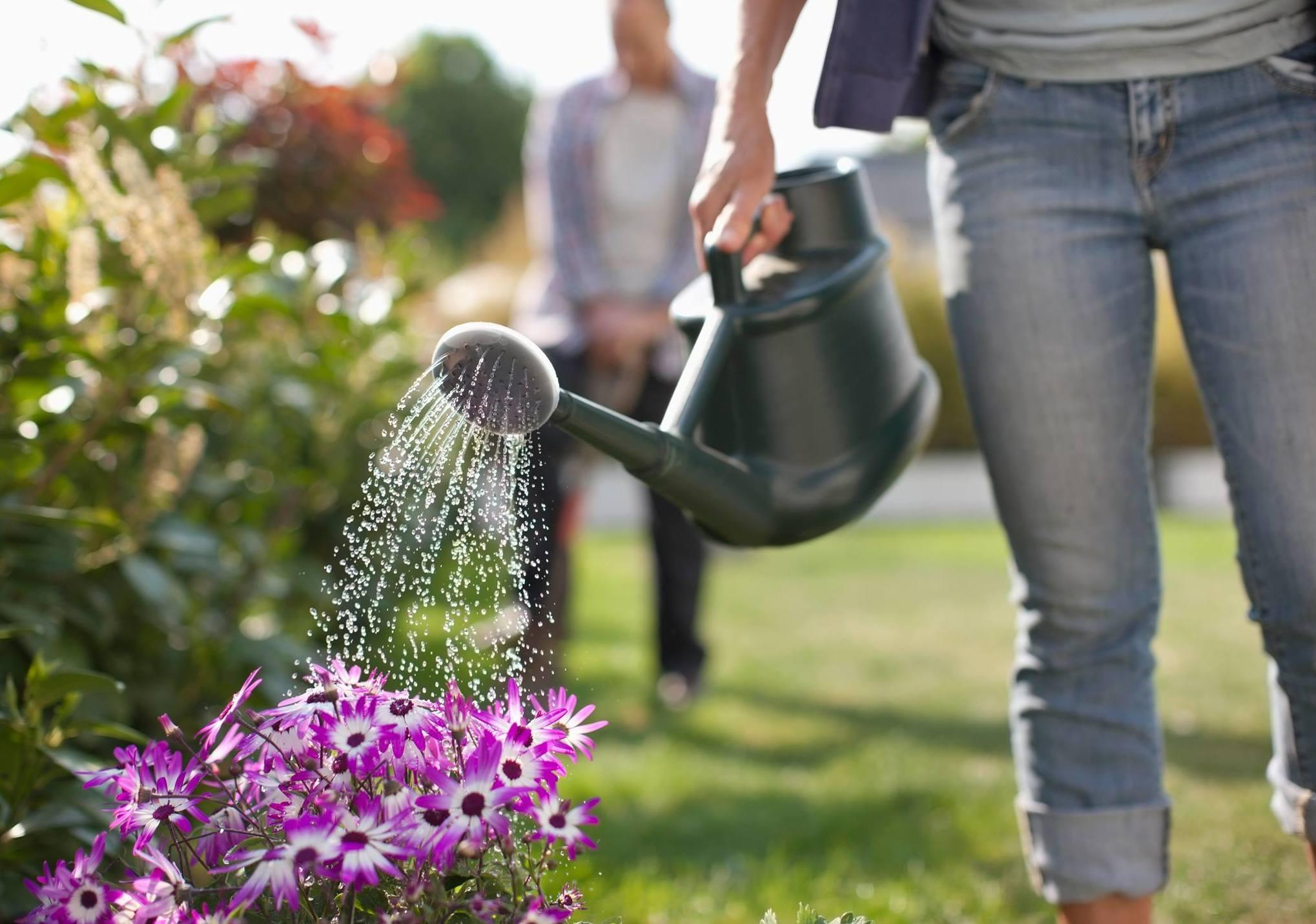 Mantenimiento de jardines Baix Llobregat
