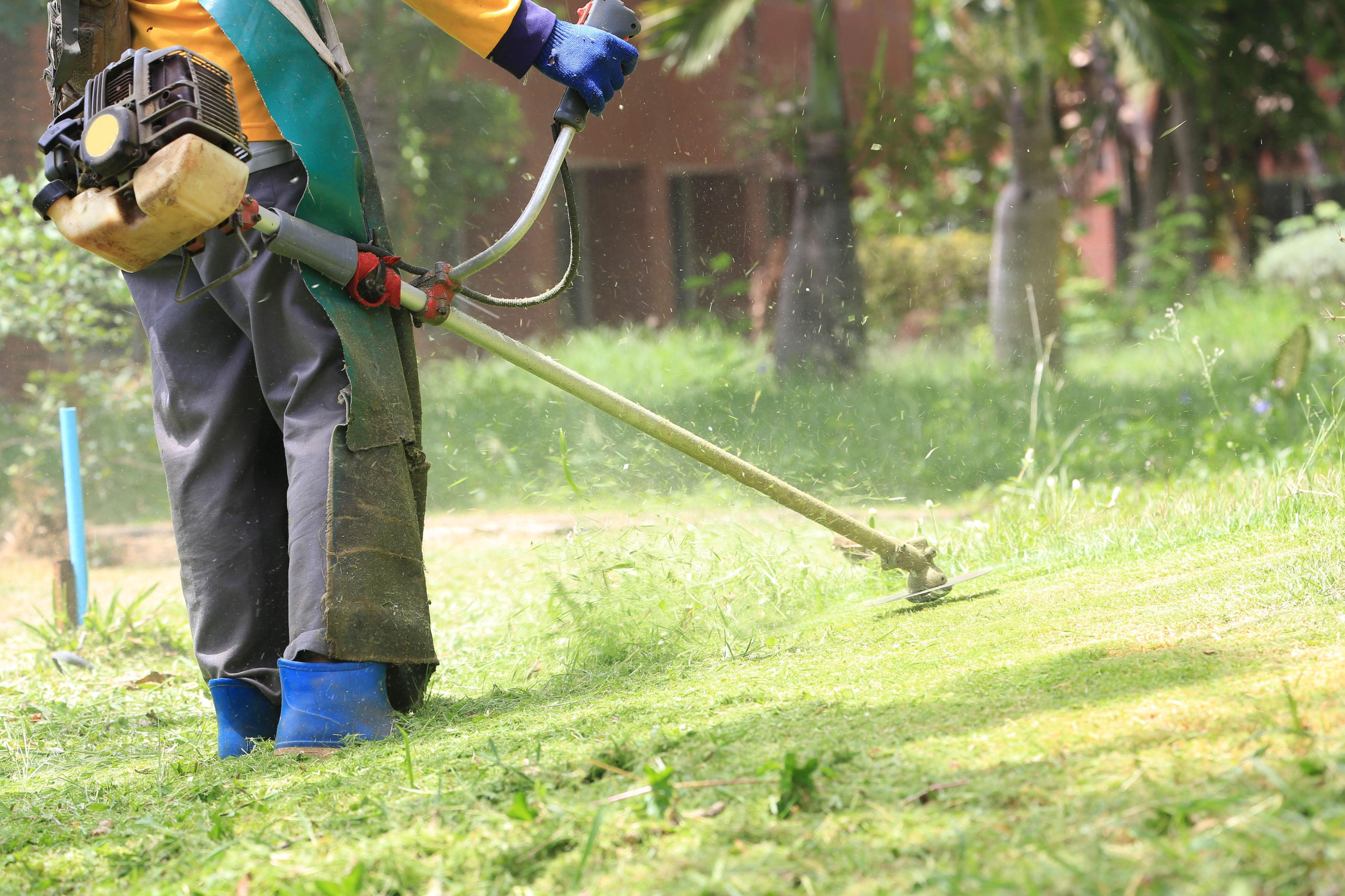 Limpieza de jardines : Servicios  de Jardinería Algarrada