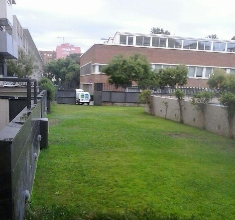 Creación de jardín de comunidad de vecinos