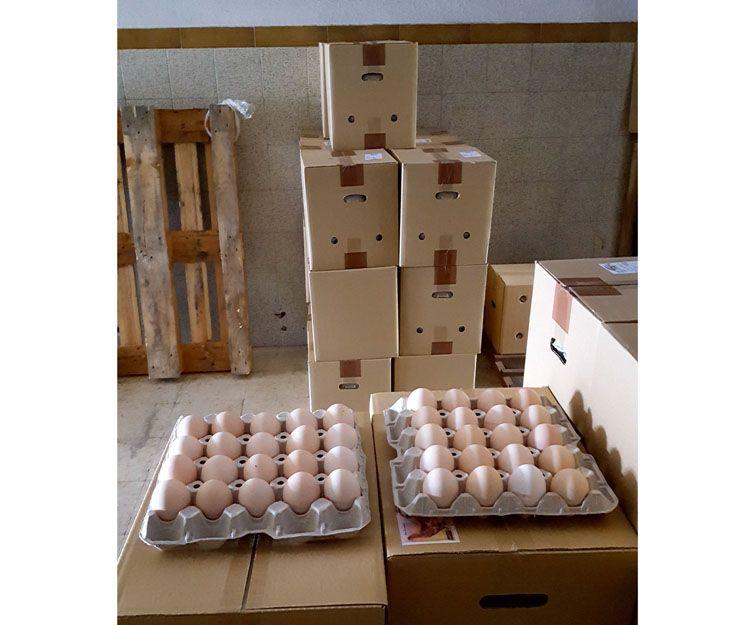 Distribución de huevos para hostelería