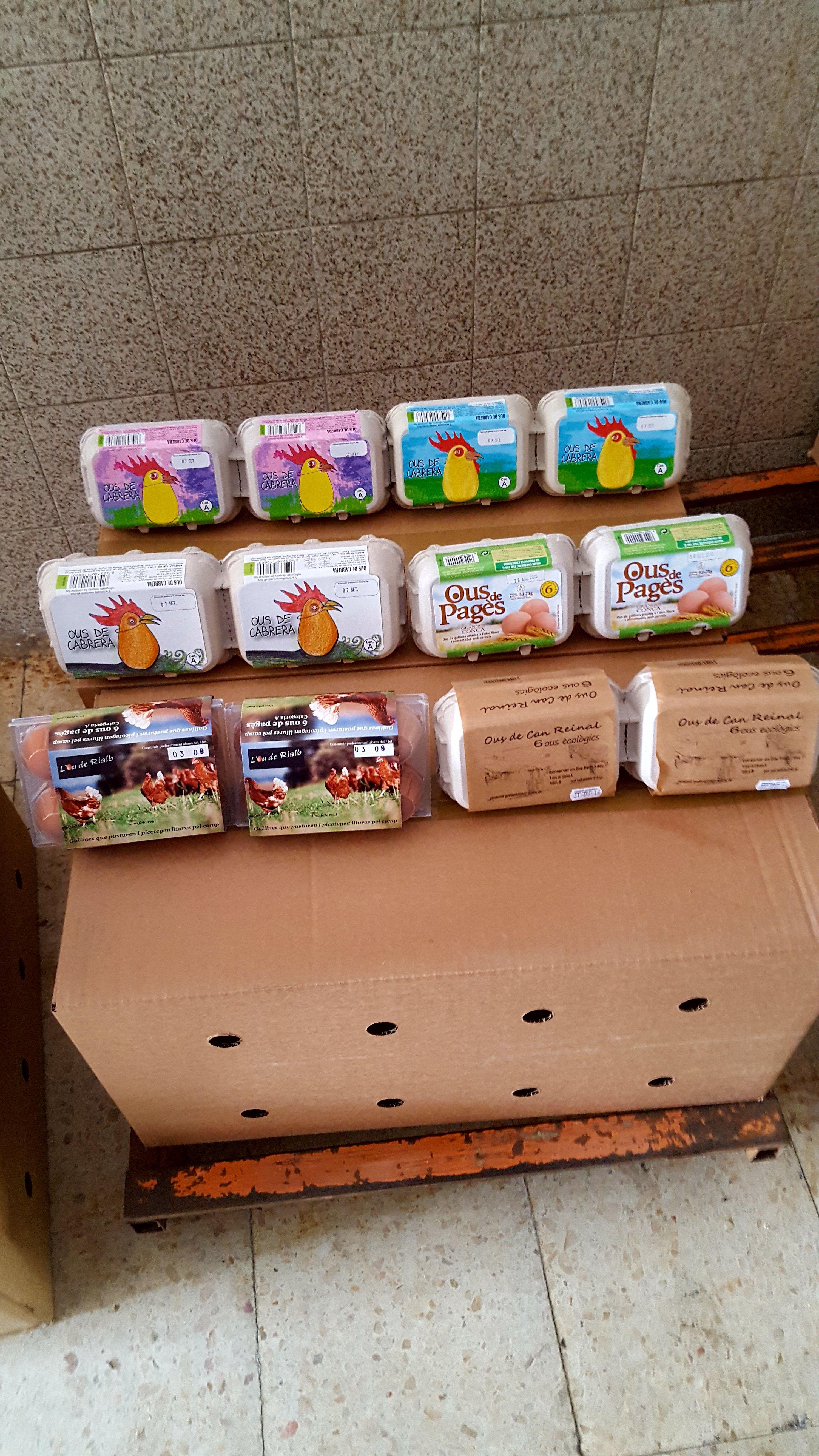 Huevos ecológicos y huevos camperos: Productos de Ous Cabrera