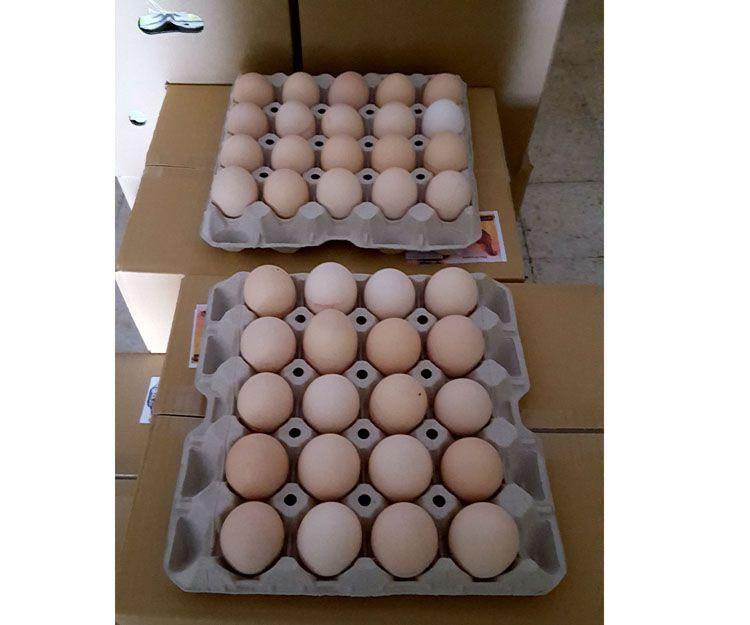 Huevos de proximidad Barcelona