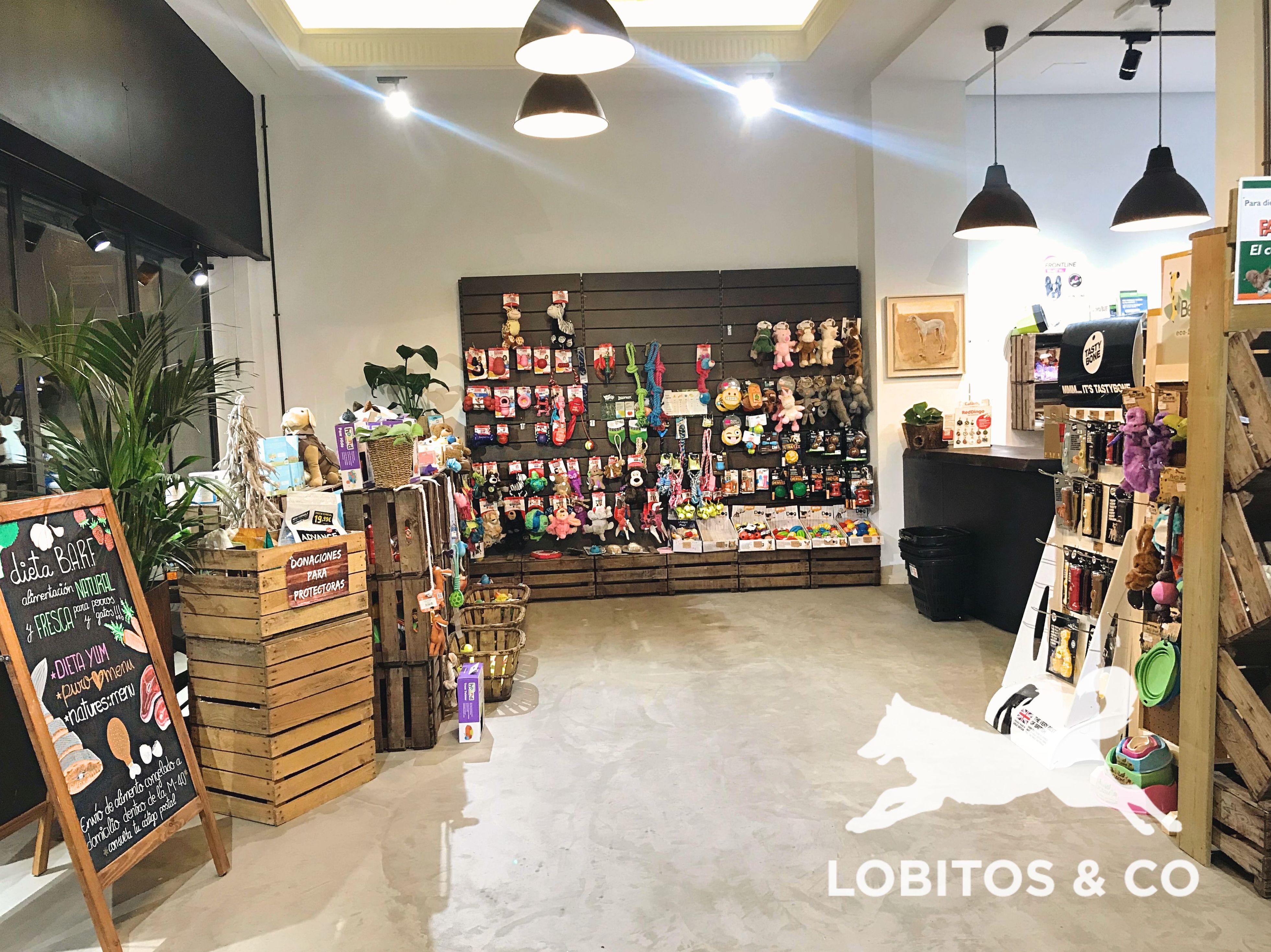 Foto 2 de  en Madrid | Lobitos & Co.