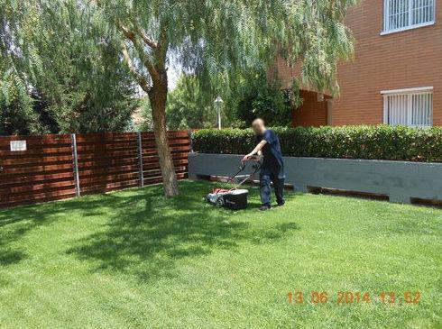 Mantenimiento de jardines: Servicios de Llemart Servei, S.L.