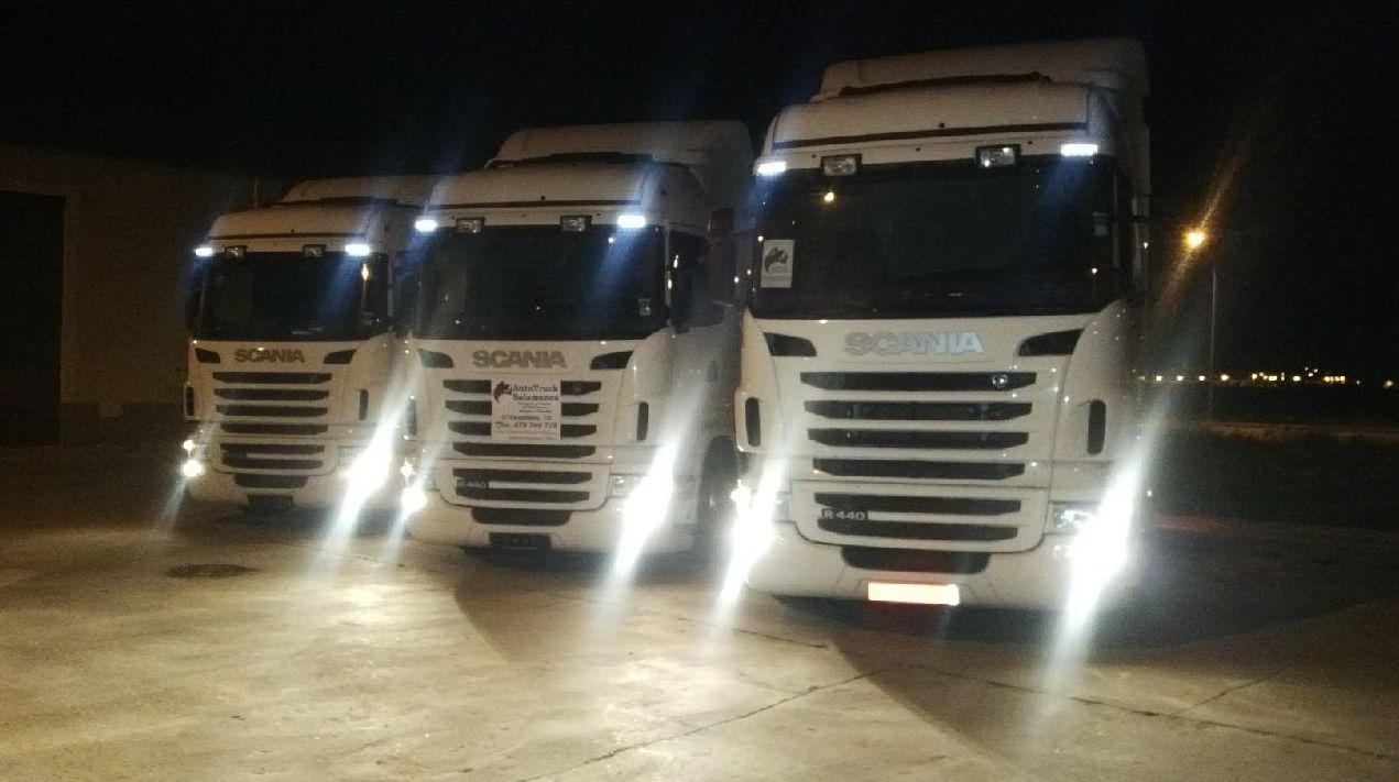 Foto 32 de Camiones en Villares de la Reina | Autotruck Salamanca