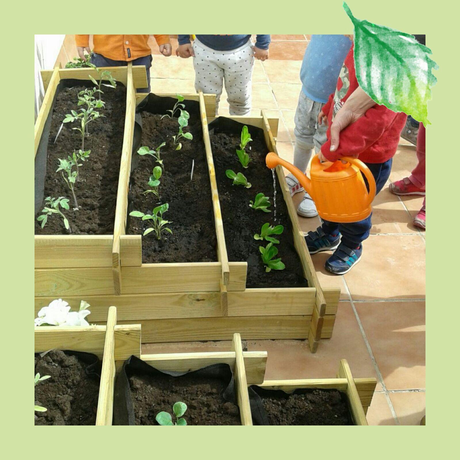Programa: cuidamos el medio ambiente: Servicios e Instalaciones de KIRIKOU - KARAVAC - EL SABIO 2