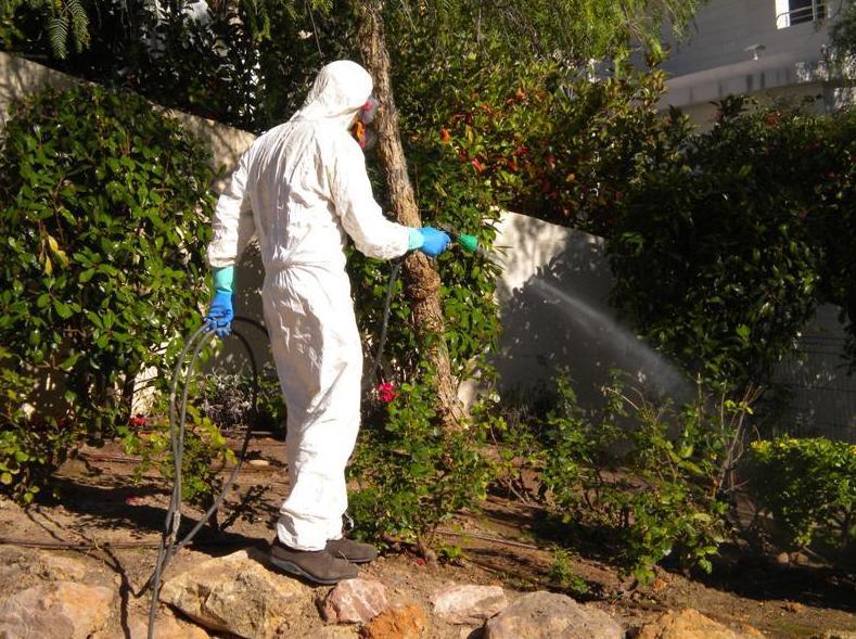 Tratamiento Fitosanitario de toda la zona ajardinada, plantas y arbustos.