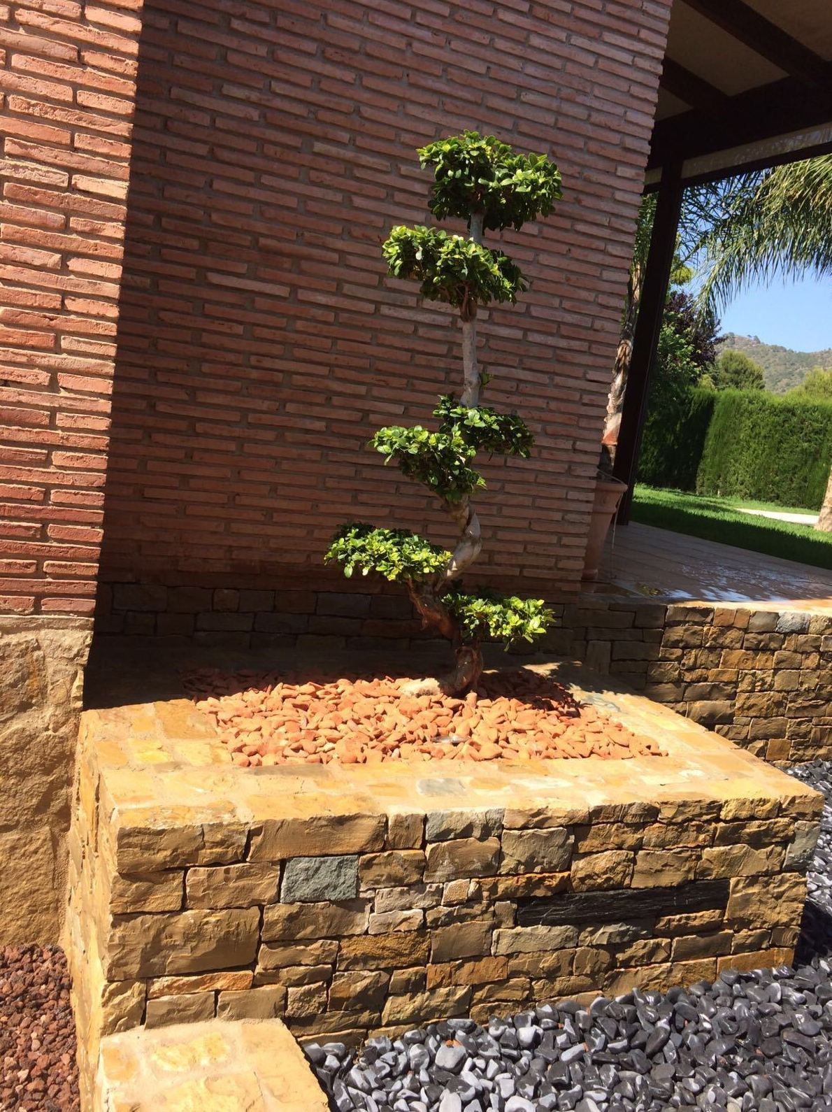 Foto 30 de Jardines (diseño y mantenimiento) en  | Podavalti