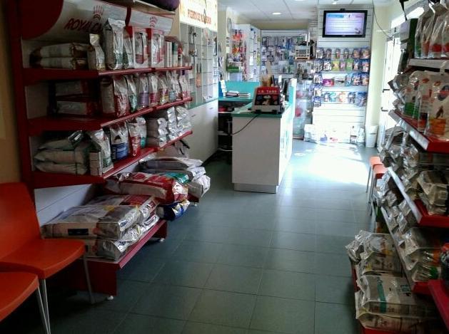 Foto 12 de Veterinarios en Mazarrón | Clínica principal Veterinaria Puerto Mazarrón