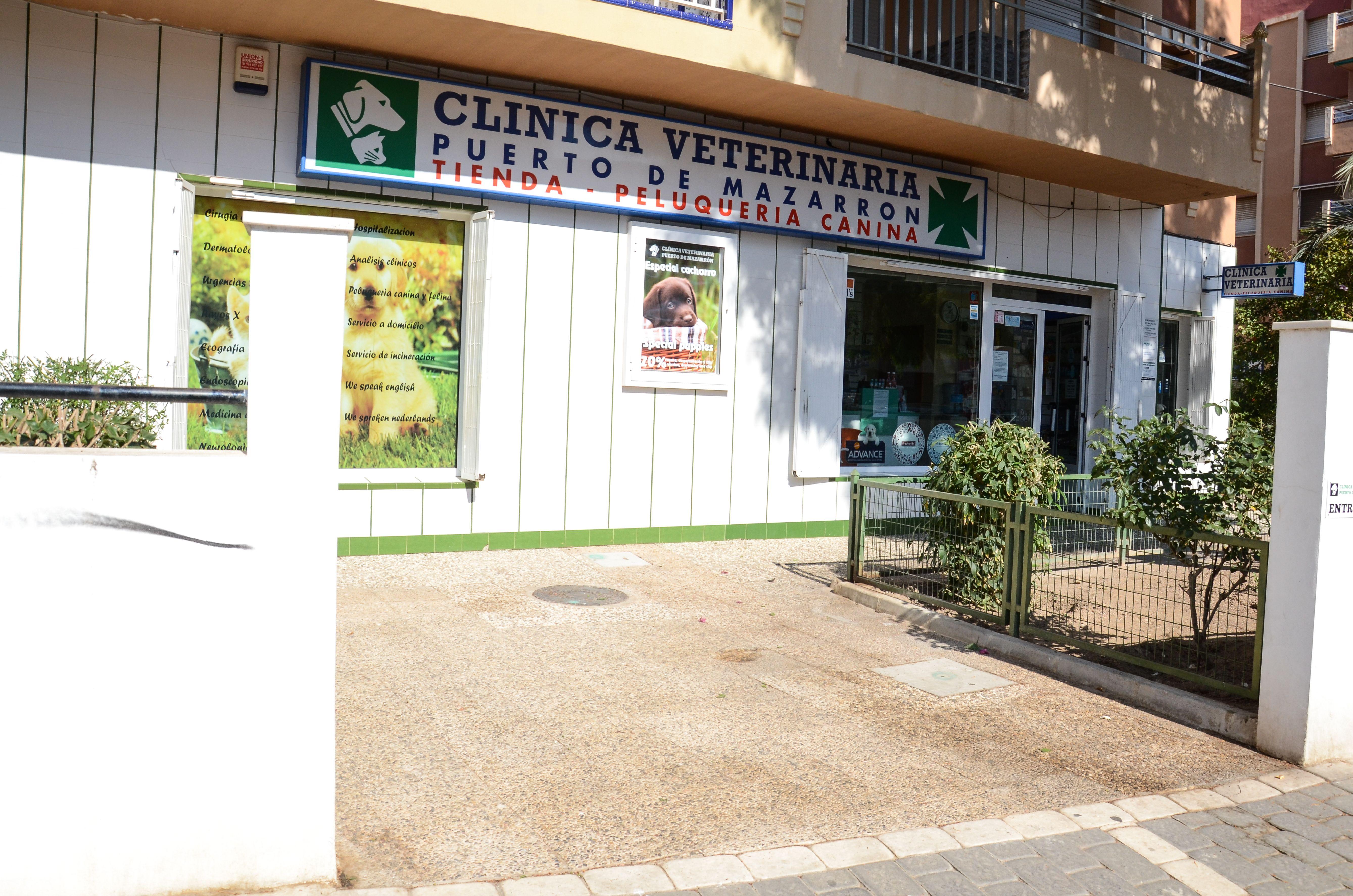 Foto 2 de Veterinarios en Mazarrón | Clínica principal Veterinaria Puerto Mazarrón