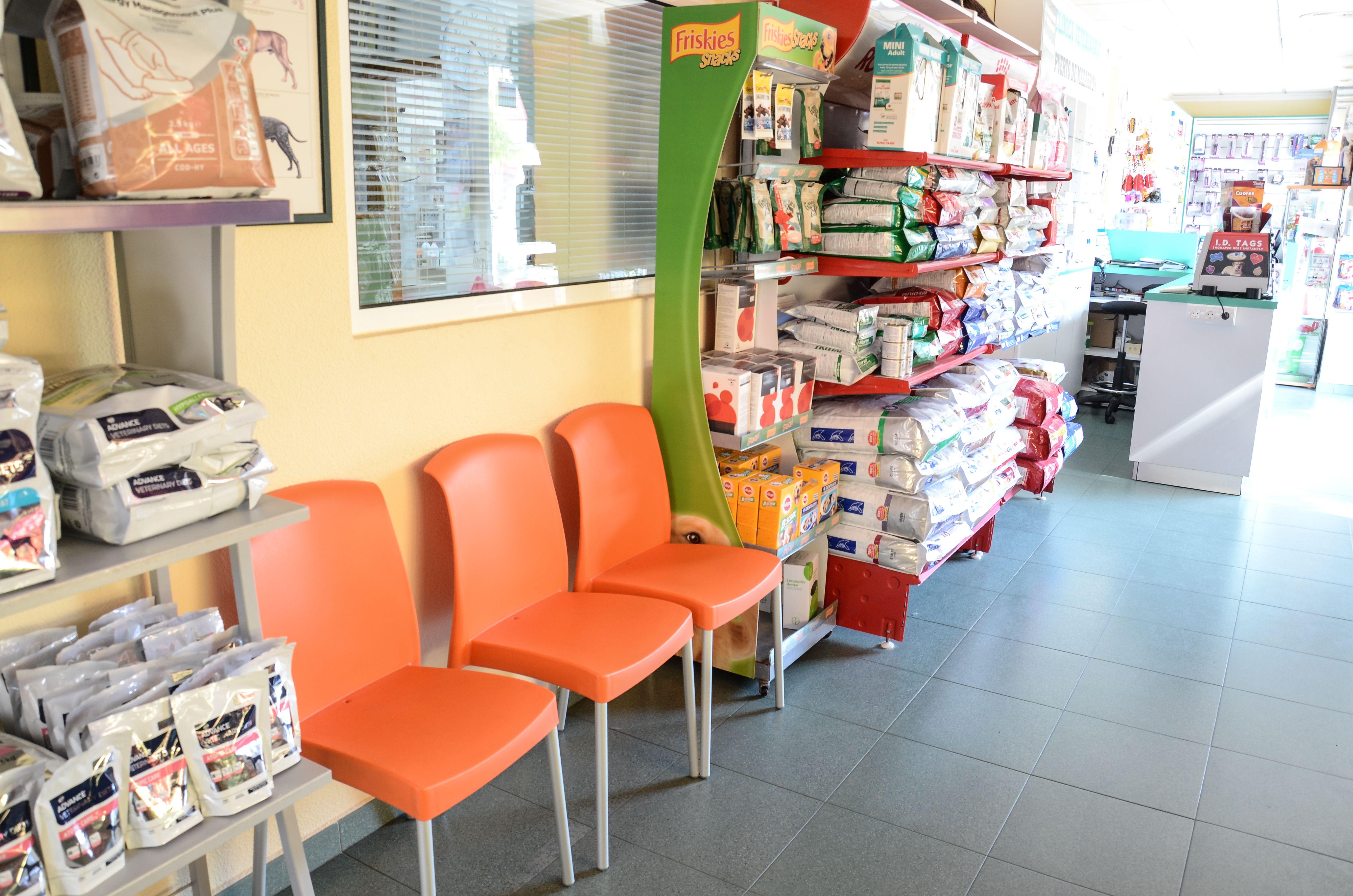 Foto 5 de Veterinarios en Mazarrón | Clínica principal Veterinaria Puerto Mazarrón