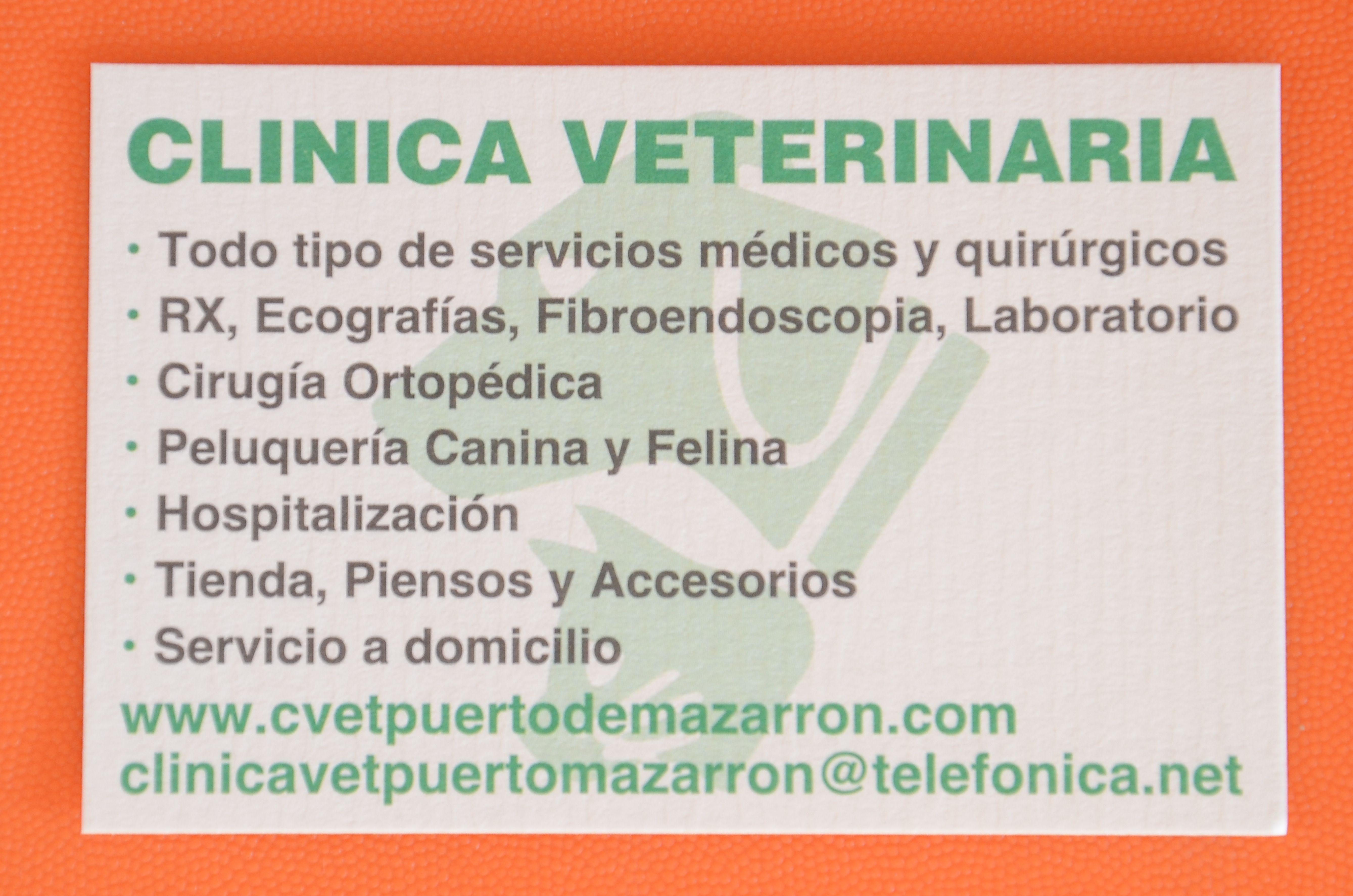 Foto 3 de Veterinarios en Mazarrón | Clínica principal Veterinaria Puerto Mazarrón
