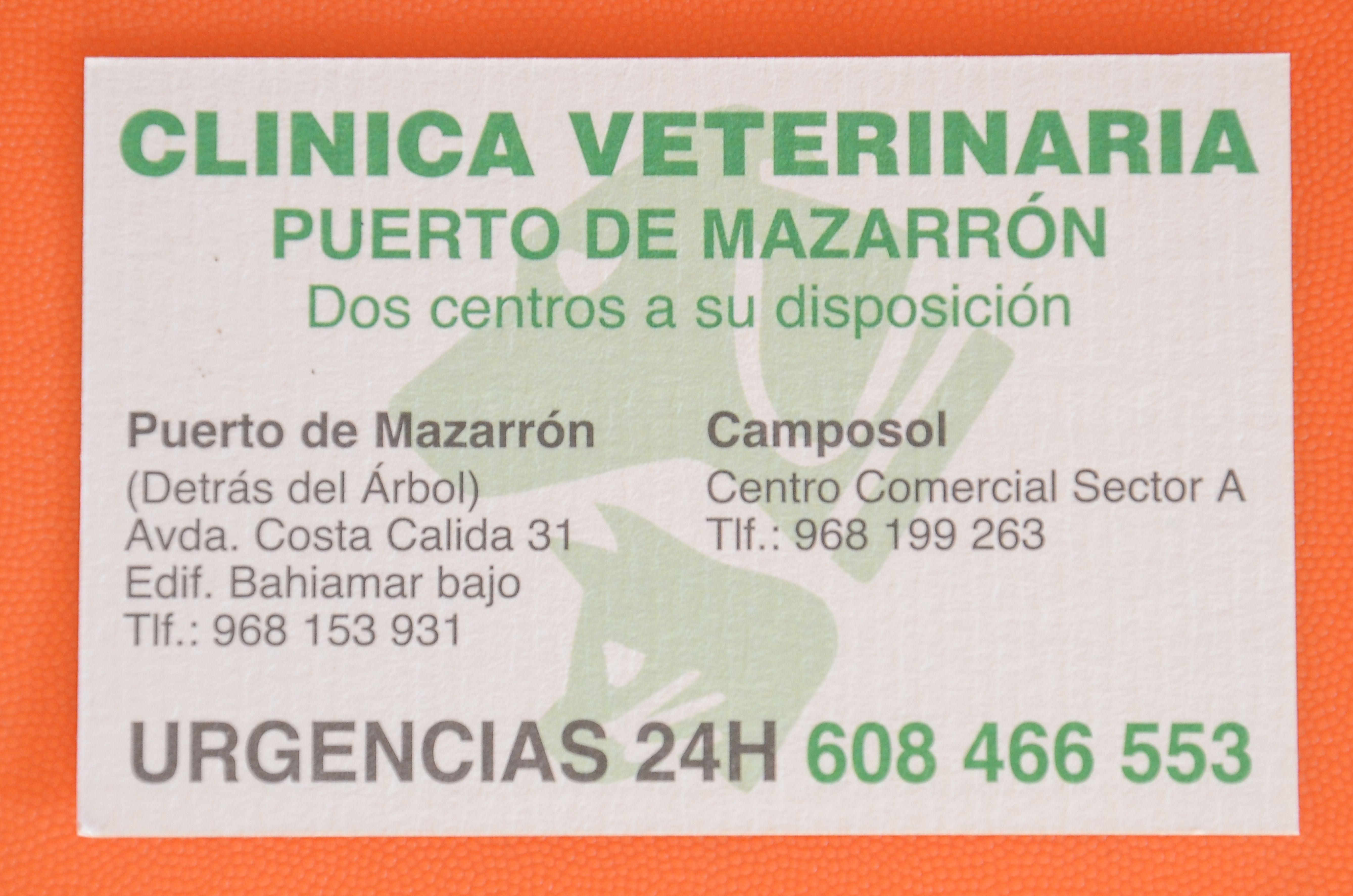 Foto 4 de Veterinarios en Mazarrón | Clínica principal Veterinaria Puerto Mazarrón