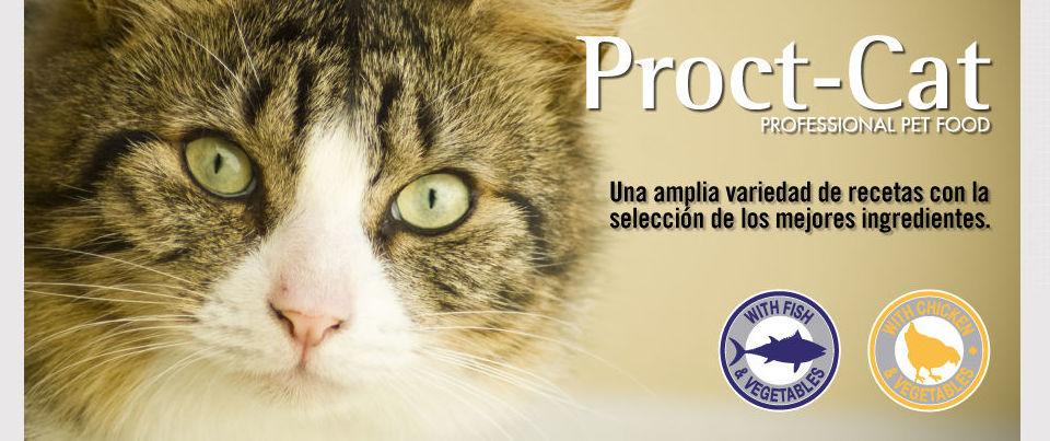 Alimento para perros y gatos.: Productos de Aloe Salud, Ortopedia Parafarmacia