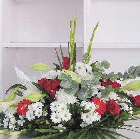Flores y plantas variadas