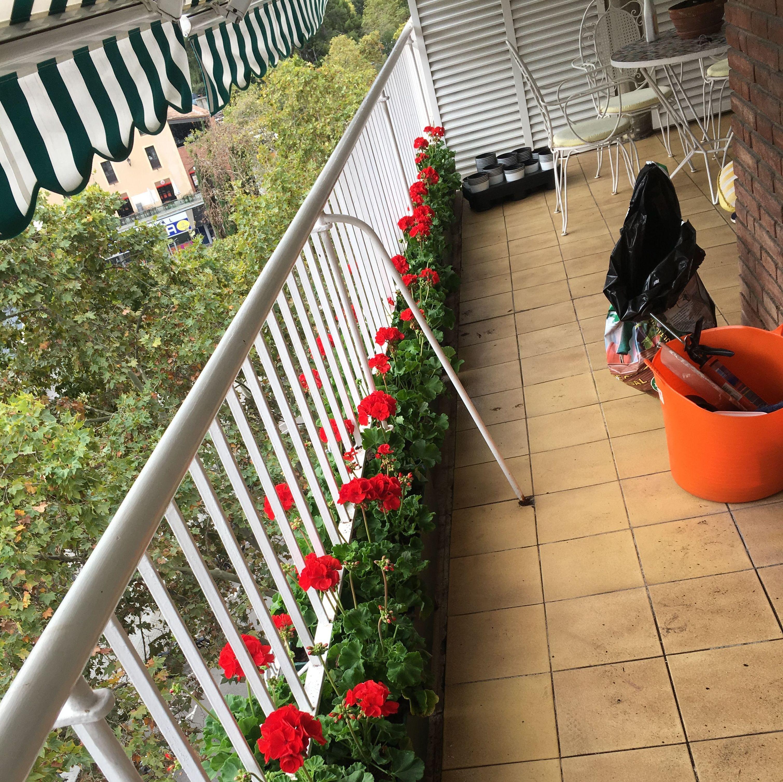 servicios de terrazas