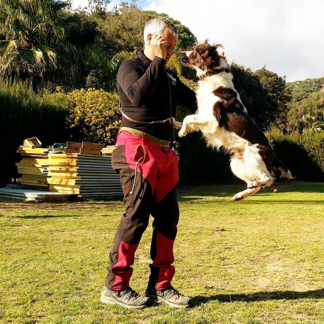 Foto 12 de Residencia canina y adopción en Canet de Mar | Centre Caní De Pedracastell
