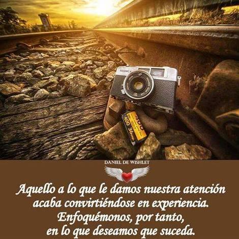 Foto 150 de Psicólogos en Benidorm | Psicóloga Rosario Ortuño