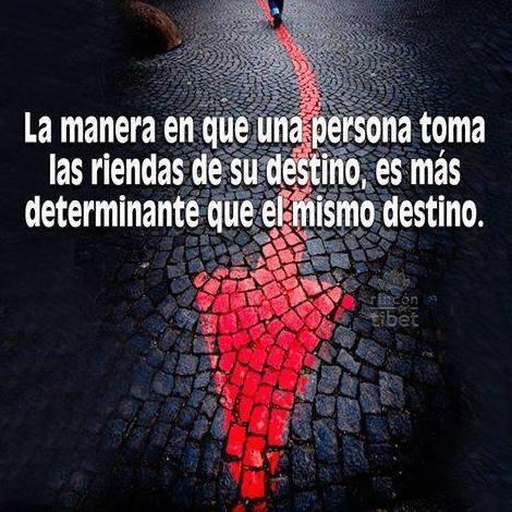 Foto 142 de Psicólogos en Benidorm | Psicóloga Rosario Ortuño