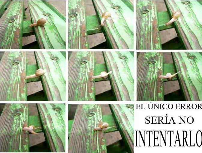 Foto 64 de Psicólogos en Benidorm | Psicóloga Rosario Ortuño