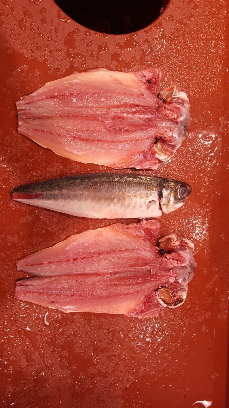 Despiece de pescado