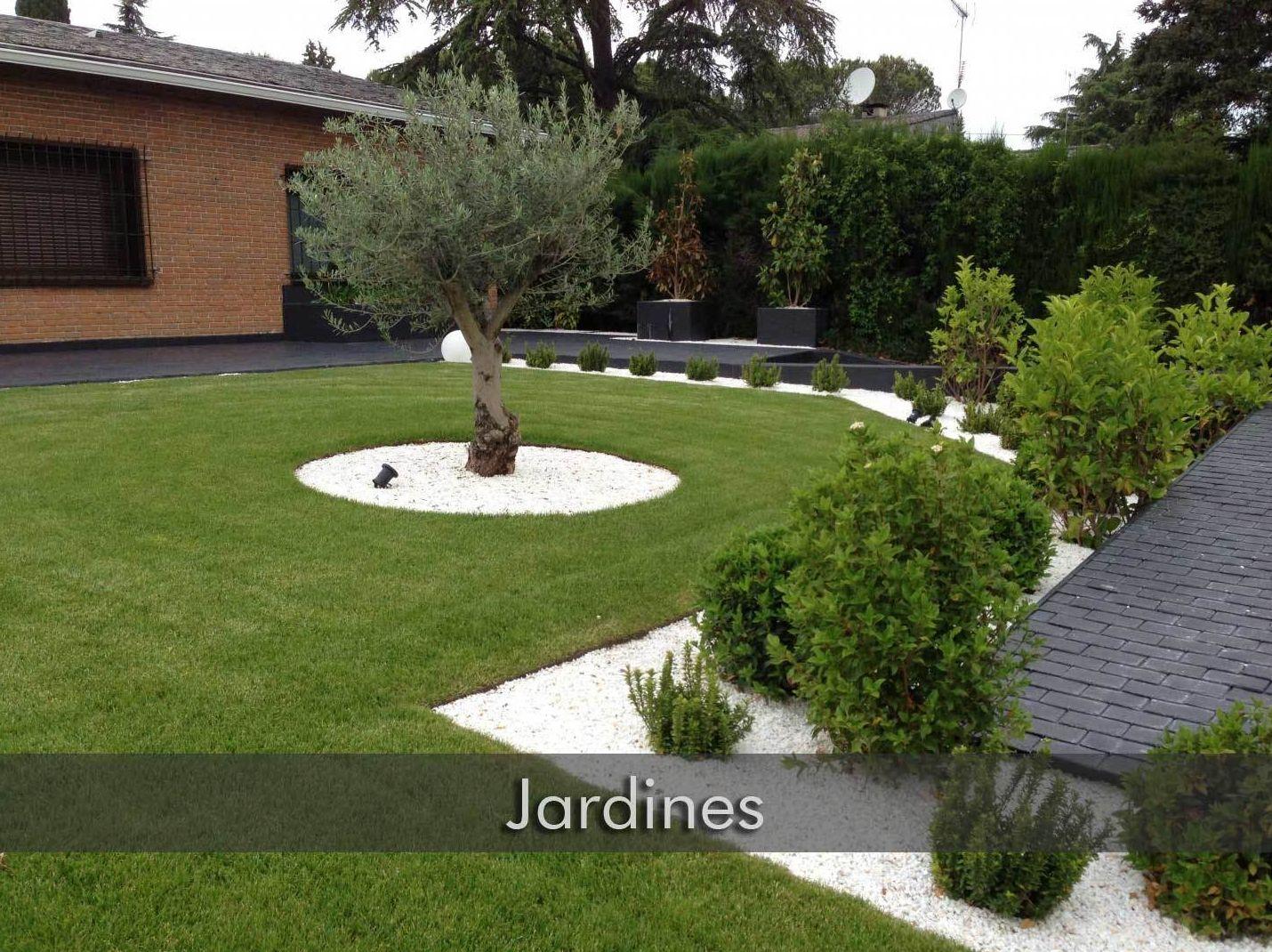 Jardines servicios de decoraciones catesela s l for Jardines decoraciones
