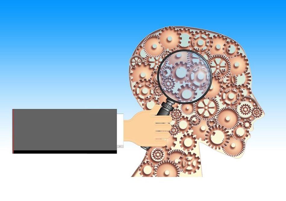 Psicología, nuestro cerebro.
