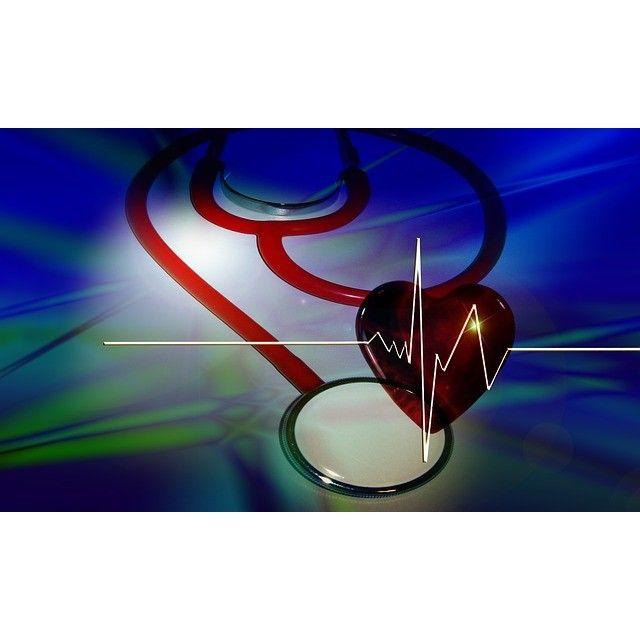 Cardiología: Servicios veterinarios de Clínica Veterinaria Canillas